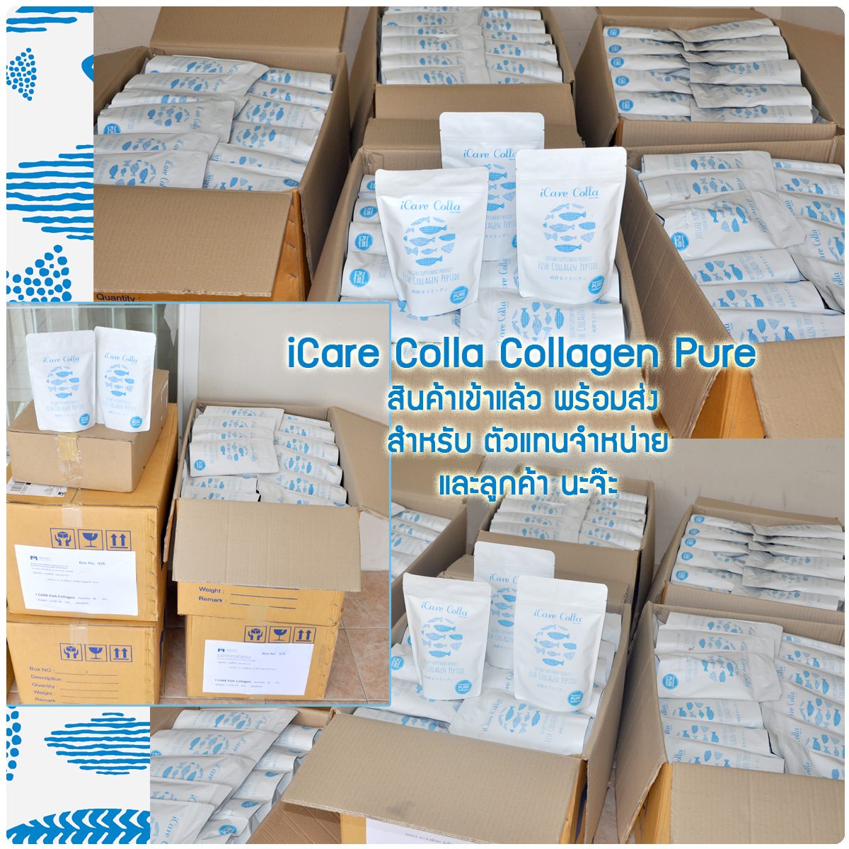 icare colla stock